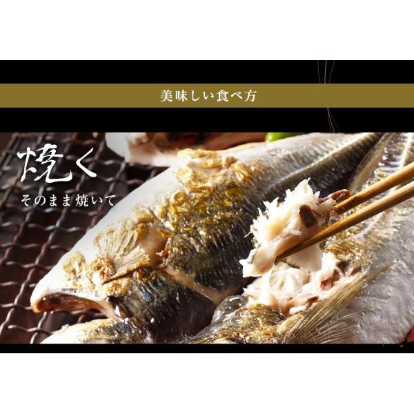 干物 北陸 石川県 能登の旬魚5種、無添加熟成一夜干し干物セット(10枚以上) 同梱不可 冷凍便 送料無料|masuyone|10
