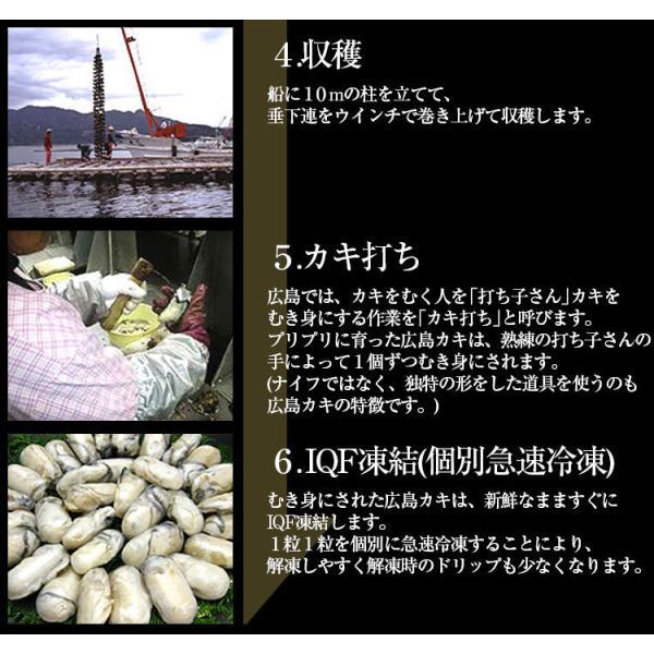 お中元 ギフト セール特価 牡蠣 生かき 広島 能美島周辺産 清浄海域産 大粒ジャンボ牡蠣1kg 30粒前後 2Lサイズ 解凍後850g IQF個別冷凍 生かき 剥き身 加熱用|masuyone|12