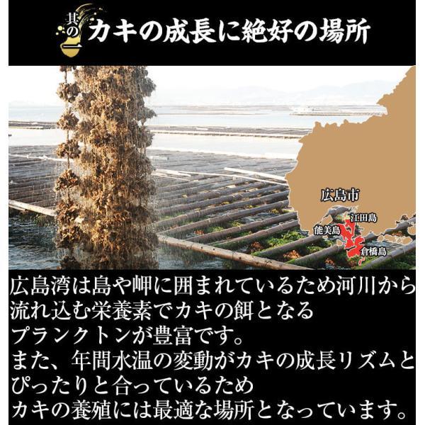 お中元 ギフト セール特価 牡蠣 生かき 広島 能美島周辺産 清浄海域産 大粒ジャンボ牡蠣1kg 30粒前後 2Lサイズ 解凍後850g IQF個別冷凍 生かき 剥き身 加熱用|masuyone|06