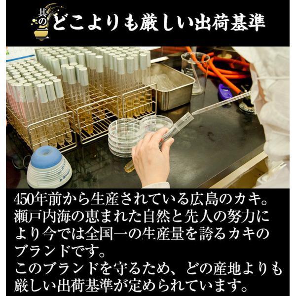お中元 ギフト セール特価 牡蠣 生かき 広島 能美島周辺産 清浄海域産 大粒ジャンボ牡蠣1kg 30粒前後 2Lサイズ 解凍後850g IQF個別冷凍 生かき 剥き身 加熱用|masuyone|07