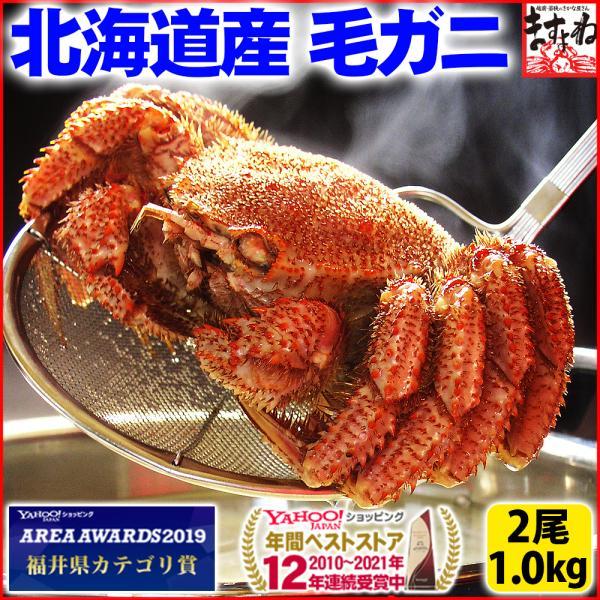 御歳暮 ギフト 北海道 かに カニ 毛蟹 毛ガニ 贈答品質 ケガニ 北海道産の濃厚毛かに(ボイル済)500g前後×2匹 冷凍便 送料無料|masuyone
