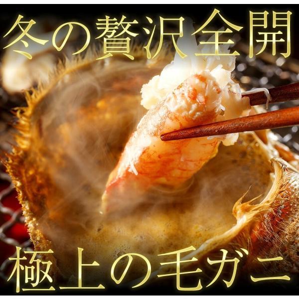 御歳暮 ギフト 北海道 かに カニ 毛蟹 毛ガニ 贈答品質 ケガニ 北海道産の濃厚毛かに(ボイル済)500g前後×2匹 冷凍便 送料無料|masuyone|06