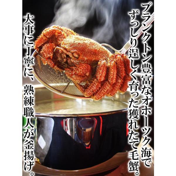 カニ かに 毛ガニ 訳あり食品 大小バラつき有 オホーツク海産 特大茹で毛蟹 総重量2kg (解凍後1.5kg前後)  冷凍便 送料無料|masuyone|03