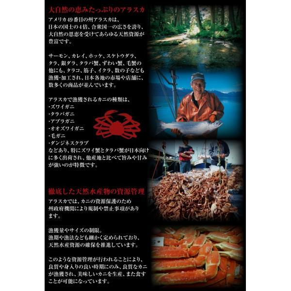 お歳暮 ギフト ズワイガニ かに カニ 蟹 ずわい 殻に切れ目入で楽&旨茹で済みで即美味しい本ズワイ1.2kg 冷凍便 送料無料|masuyone|06