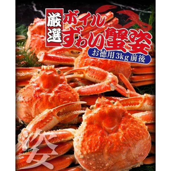カニ かに ズワイ かに カニ 蟹 非再凍結で新鮮、訳なし本ずわい姿3kg(ボイル)600g×5 味噌みそ 冷凍便 送料無料|masuyone|05