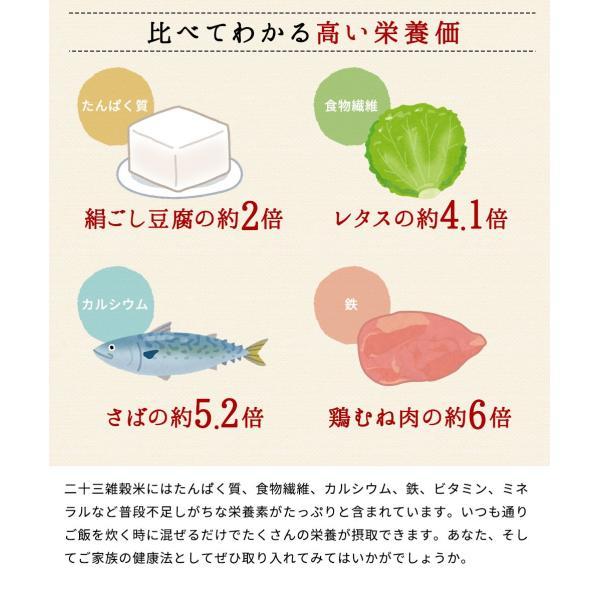 ※在庫切れ※ 純国産 23種 雑穀米 200g ご飯 米 もち麦 アマランサス ポイント消化 健康 メール便 日時指定不可 送料無料|masuyone|13