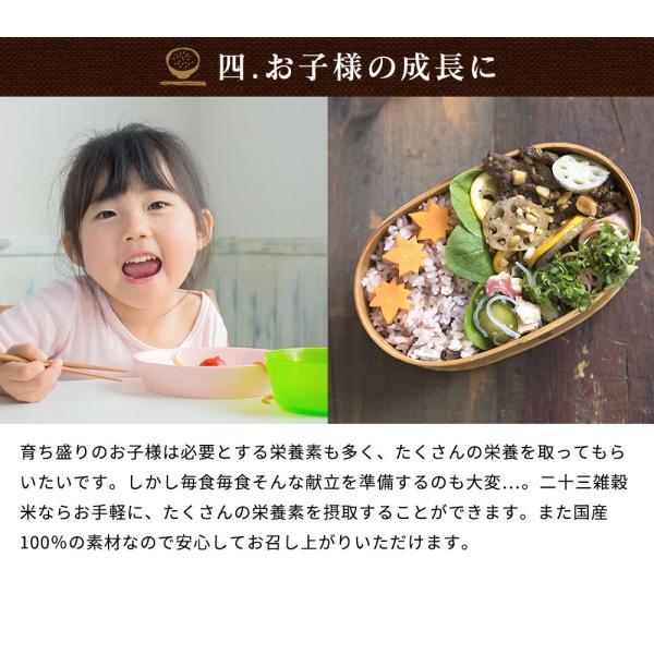 ※在庫切れ※ 純国産 23種 雑穀米 200g ご飯 米 もち麦 アマランサス ポイント消化 健康 メール便 日時指定不可 送料無料|masuyone|15