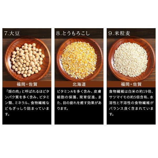 ※在庫切れ※ 純国産 23種 雑穀米 200g ご飯 米 もち麦 アマランサス ポイント消化 健康 メール便 日時指定不可 送料無料|masuyone|05