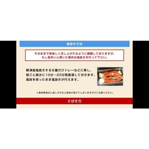 かに カニ 蟹 ズワイガニ kani  プレミアム会員は2000円OFF 非再凍結鮮度ずわい脚5kg ボイル 19-27肩 9-12人前 冷凍便 送料無料 ※同梱不可※|masuyone|19