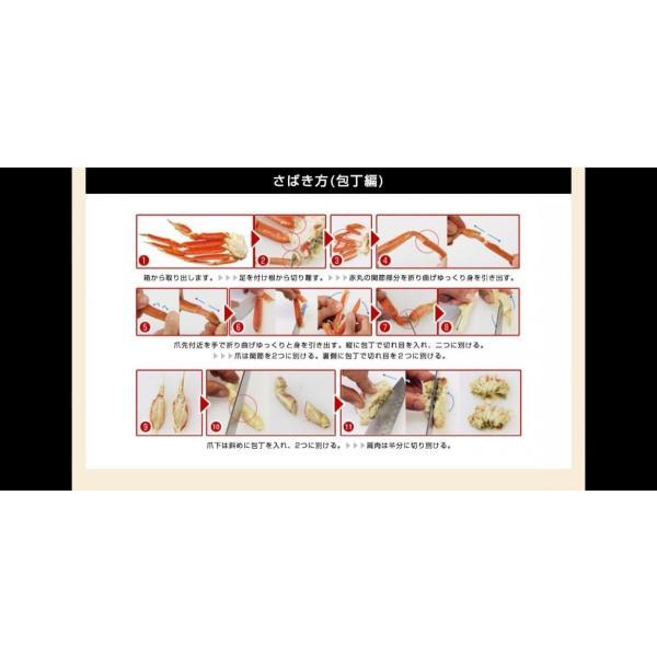 かに カニ 蟹 ズワイガニ kani  プレミアム会員は2000円OFF 非再凍結鮮度ずわい脚5kg ボイル 19-27肩 9-12人前 冷凍便 送料無料 ※同梱不可※|masuyone|20