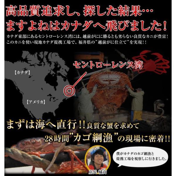 カニ かに ズワイガニ 非再凍結ワンフロ ーズン鮮度 特大 本ずわい蟹 姿 約750gx3匹 2.25kg前後 味噌みそミソ 冷凍便 送料無料|masuyone|04