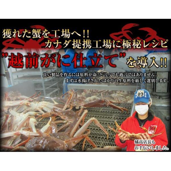 カニ かに ズワイガニ 非再凍結ワンフロ ーズン鮮度 特大 本ずわい蟹 姿 約750gx3匹 2.25kg前後 味噌みそミソ 冷凍便 送料無料|masuyone|06