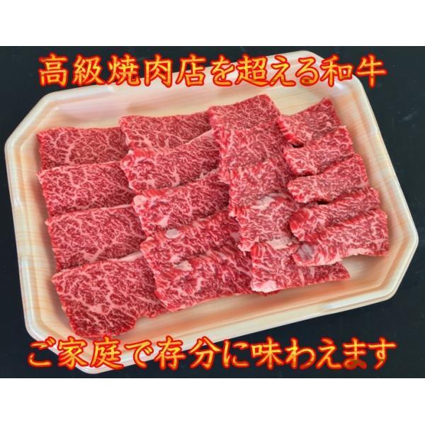 焼肉 最上級A5A4等級 国産黒毛和牛 カルビ焼用500g 焼肉用 霜降カルビ 福島牛 牛肉 和牛 上カルビ プレゼント ギフト|matador|03