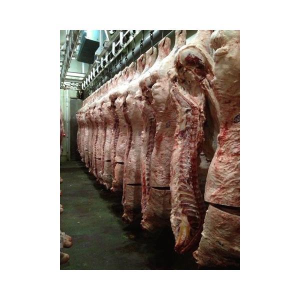 最上級銘柄和牛 国産黒毛和牛リブロースすき焼スライス 400g 贈答用 ギフトに 福島牛|matador|03