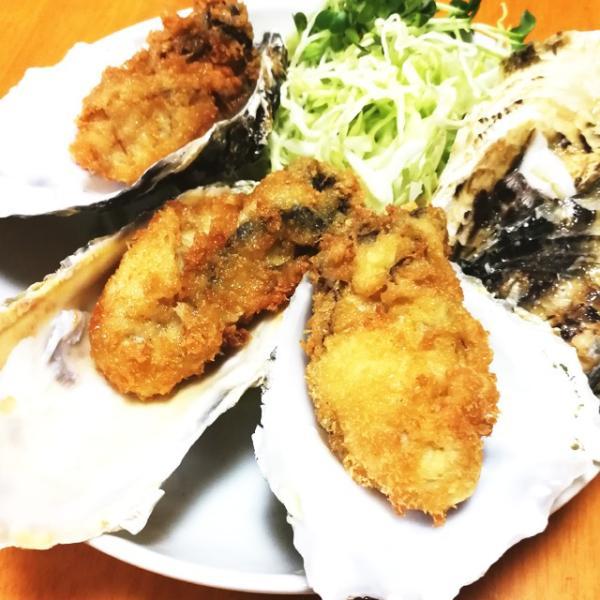 殻付き牡蠣 漁師直送 宮城県産 5kg 生食用 送料無料 旬 活 かき 生ガキ|matsu-kaki|07