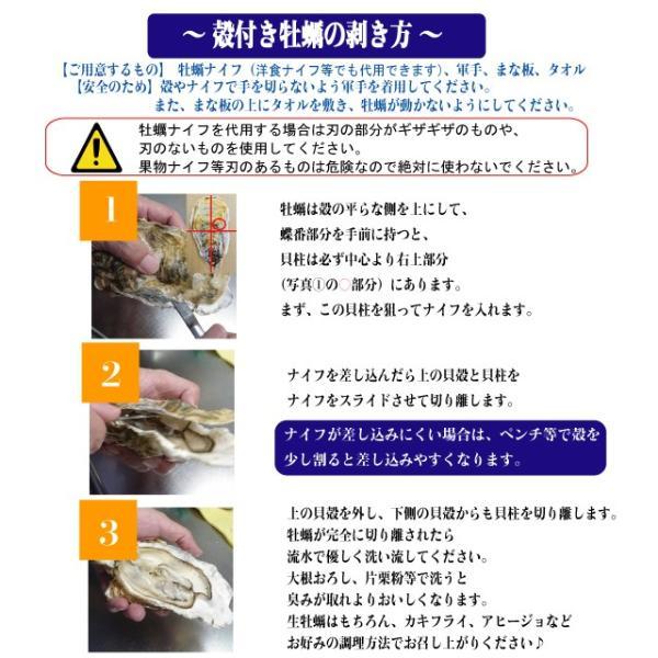 殻付き牡蠣 産地直送 宮城県産 5kg 生食用 送料無料 旬 活 かき 生ガキ|matsu-kaki|09
