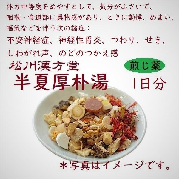 半夏厚朴湯(ハンゲコウボクトウ) お試し1日分 薬局製剤 煎じ薬 1包 漢方薬 自律神経 改善 咳止め|matsukawa-kanpo