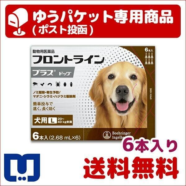 A:フロントラインプラス 犬用 L (20〜40kg) 6本入  動物用医薬品 使用期限:2022/08/31以降(05月現在)