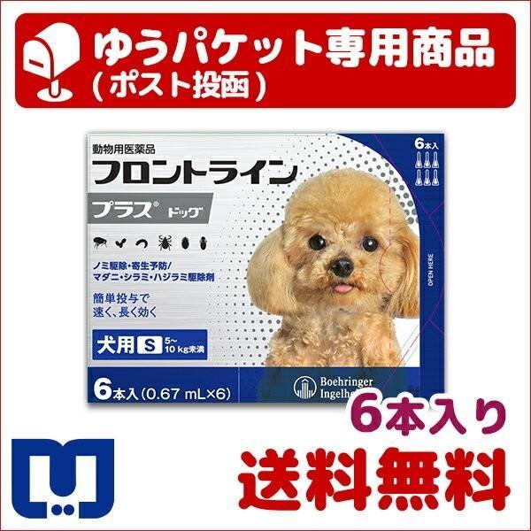 |A:【BとC同梱不可】フロントラインプラス 犬用  S (5〜10kg) 6本入 動物用医薬品