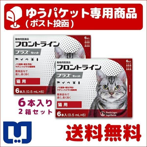 A:フロントラインプラス 猫用 6本入 2箱セット 動物用医薬品 使用期限:2023/01/31以降(05月現在)