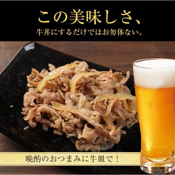 松屋 牛めしの具(プレミアム仕様) 20個 牛丼の具 牛肉 冷凍  matsuyafoods 16