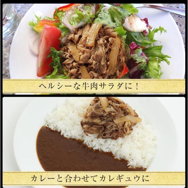 松屋牛めしの具(プレミアム仕様) 30個 牛丼の具 冷凍 |matsuyafoods|17