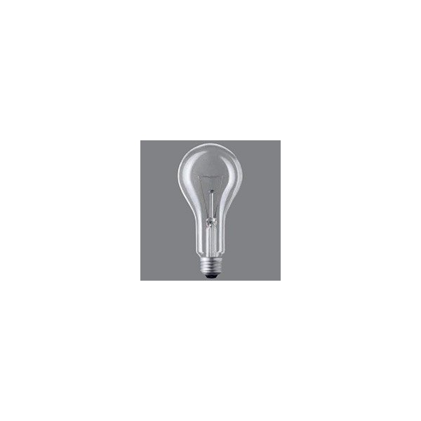 一般電球 L100V200W