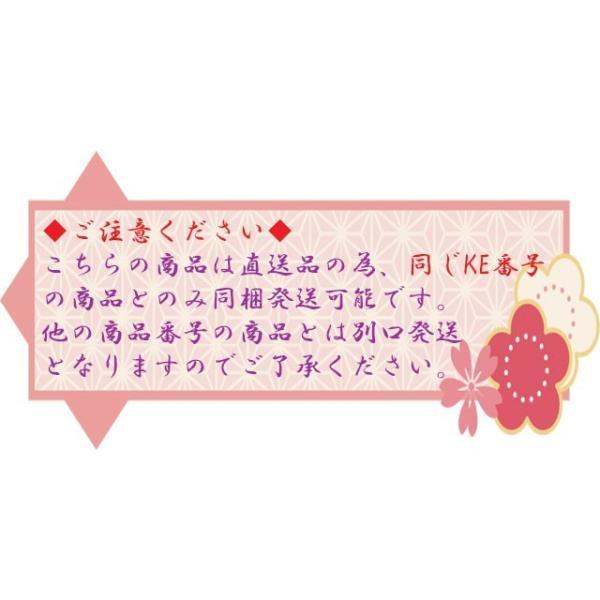 簡単白髪染めシャンプー 500ml 黒染|mattarisei|04