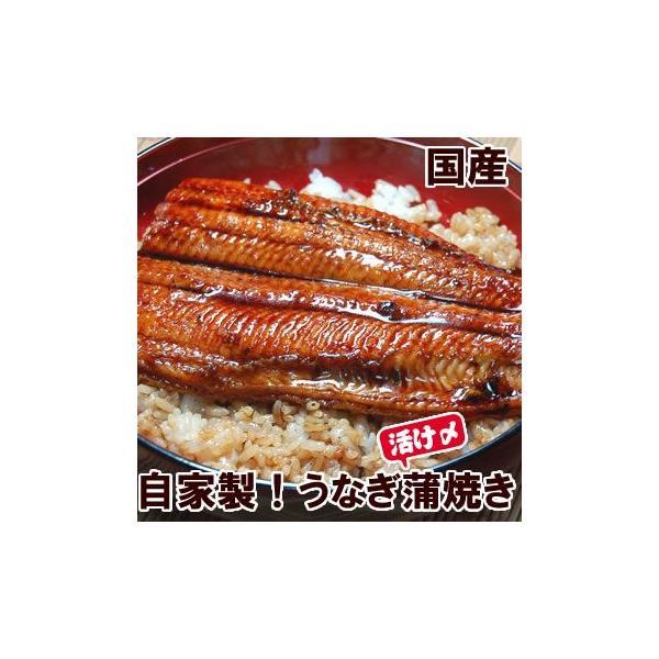 自家製 活〆うなぎ蒲焼き(冷凍) 200g以上の特大 1尾 (国産)タレ付 国内産の活きたうなぎを捌いた自家製うなぎです