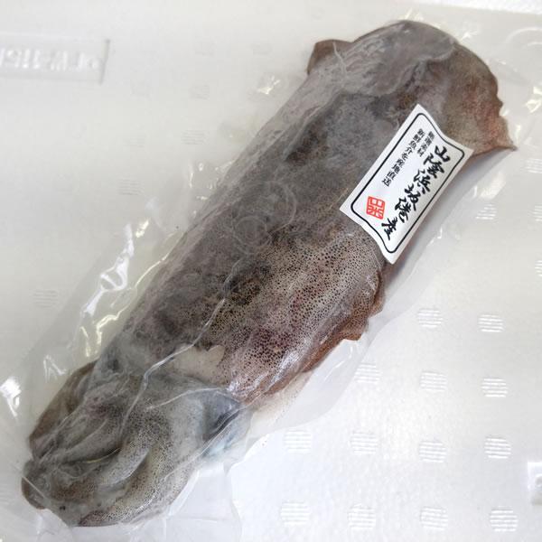 アオリイカ(冷凍) 1杯 約150-199g程度 (浜坂産)  (あおりいか・水いか・水イカ)