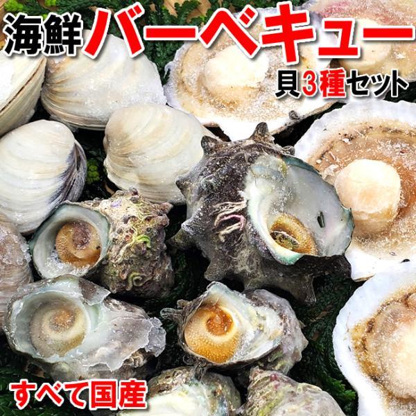 (送料無料)国産 貝類3種の海鮮バーベキューセット(冷凍)ホタテ(片貝)・サザエ・ホンビノスの3種の貝のセットです。(さざえ、ほたて、帆立、bbq)