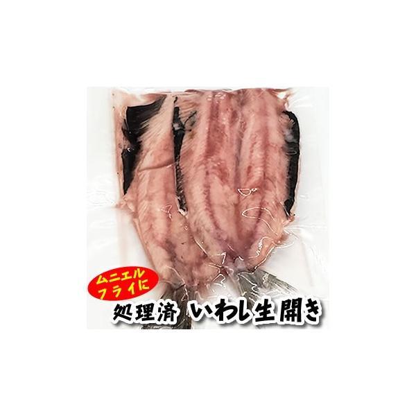 真いわし生開き(冷凍)大きめ 2尾入(山陰沖産)(真イワシ、真鰯、鰯、イワシ)