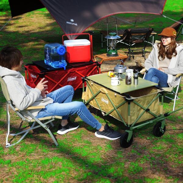 MAULBEERE/マルビーレ FOLDING TABLE アルミ アウトドアキャリーワゴン用 折り畳みテーブル 超軽量1.6Kg 汎用 アウトドアワゴンテーブル キャリーカート maulbeere 03