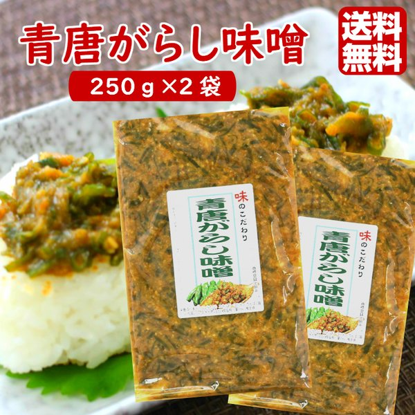 送料無料 青唐がらし味噌 (250g) 2袋セット  青唐辛子味噌 ご飯のお供 お酒のおつまみ 馬場音一商店