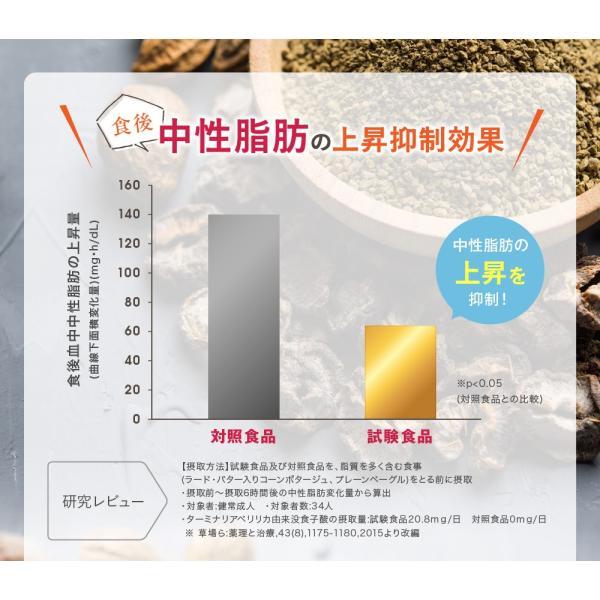 オサエル 30日分 食事に含まれる脂肪や糖の吸収をおさえる サプリ 【MBH公式】 mbh-online-shop 12