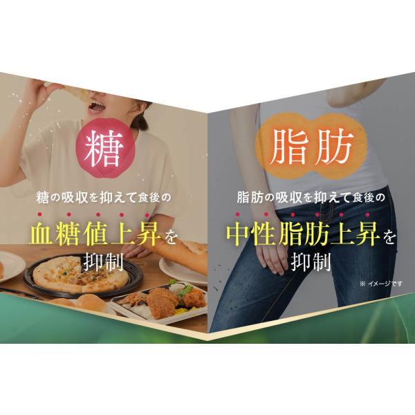 オサエル 30日分 食事に含まれる脂肪や糖の吸収をおさえる サプリ 【MBH公式】 mbh-online-shop 04