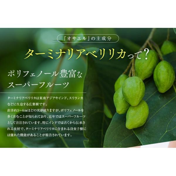 オサエル 30日分 食事に含まれる脂肪や糖の吸収をおさえる サプリ 【MBH公式】 mbh-online-shop 05