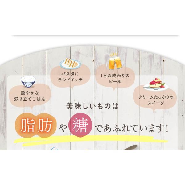 オサエル 30日分 食事に含まれる脂肪や糖の吸収をおさえる サプリ 【MBH公式】 mbh-online-shop 07