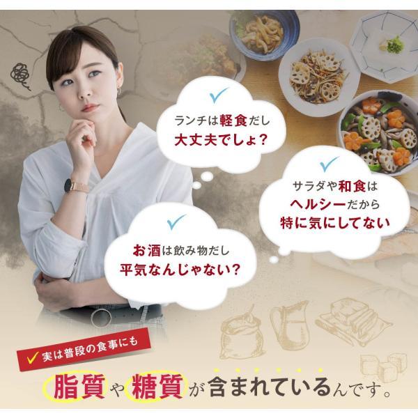 オサエル 30日分 食事に含まれる脂肪や糖の吸収をおさえる サプリ 【MBH公式】 mbh-online-shop 09