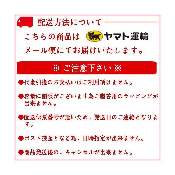 おつまみ 宮崎名物 焼き鳥 鶏の炭火焼100g×3パック セット 送料無料|meat-21|02
