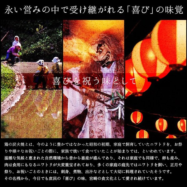 おつまみ 宮崎名物 焼き鳥 鶏の炭火焼100g×3パック セット 送料無料|meat-21|04