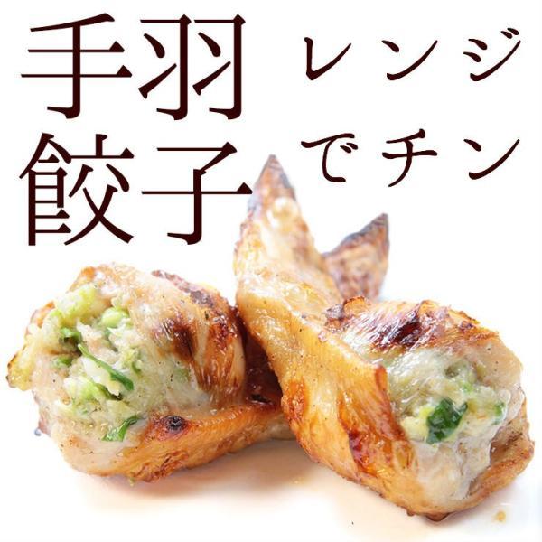 冷凍食品 焼き手羽先餃子(手羽餃子/てばぎょうざ/手羽先ギョーザ) 5本 レンジでチン 冷凍 骨付き肉 業務用 人気 唐揚げ 惣菜