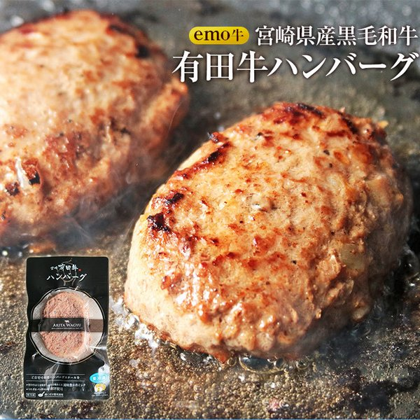 ハンバーグ 冷凍 100g×5 EMO牛 有田牛 国産牛 牛肉 宮崎県産 黒毛和牛 お取り寄せ 人気には訳あり 食品 グルメ ギフト