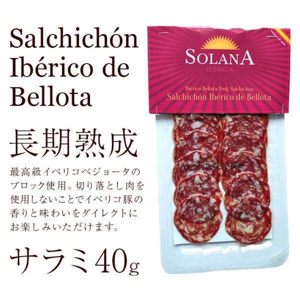 おつまみ イベリコ豚生ハム仕立て イベリコベジョータサラミ40g×2|meat-21