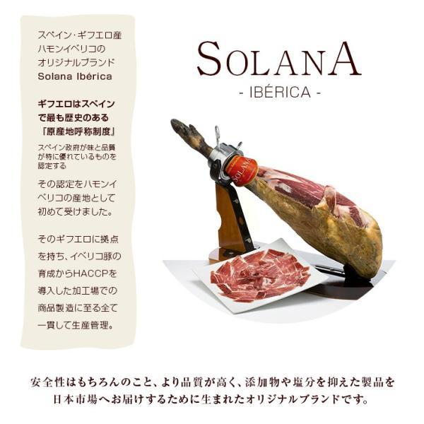 おつまみ イベリコ豚生ハム仕立て イベリコベジョータサラミ40g×2|meat-21|04