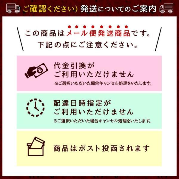 おつまみ イベリコ豚生ハム仕立て イベリコベジョータサラミ40g×2|meat-21|06