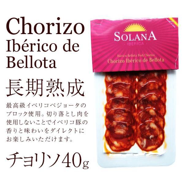 おつまみ イベリコ豚生ハム仕立て イベリコベジョータチョリソ40g×2 meat-21