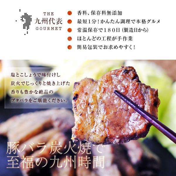 500えん 送料無 ポイント消化 簡易包装 訳あり食品 肉 わけあり ワンコイン おつまみ 豚バラ炭火焼 100g 焼き豚 お試し 珍味 レトルト食品 meat-21 03