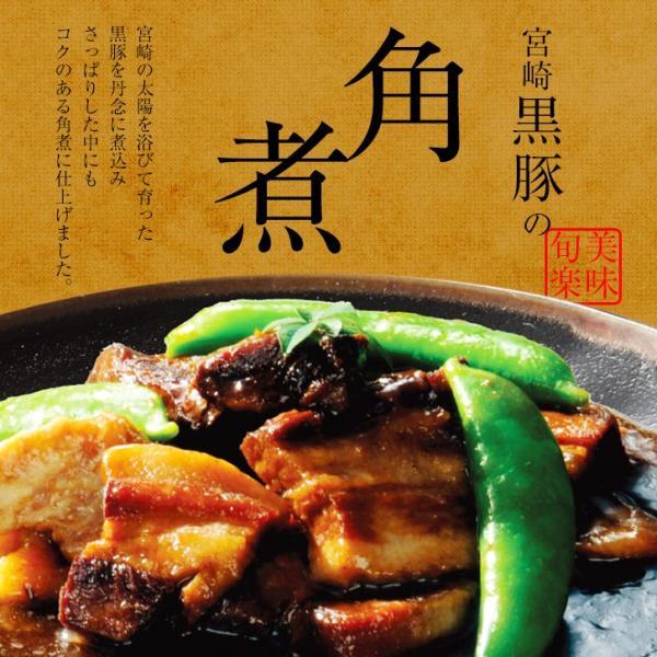 ポイント消化 送料無料 おつまみ 宮崎黒豚の角煮 250g×1個 人気には訳あり 食品 お試し 人気には訳あり 食品 お取り寄せ グルメ 肉 絶品 珍味