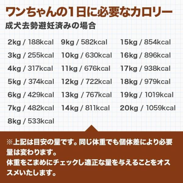 【2Pセット】馬肉パラパラミンチ 1kg(500g×2Pセット) ※冷凍バラ凍結です ペット用馬肉 (生馬肉) ※同梱包は合計10kgまでです。|meat-gen|19